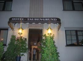 Airport-Hotel zum Taubengrund, Kelsterbaha