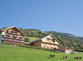 Oberbaumgartnerhof, Pfalzen