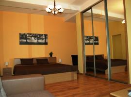 Valdemaras Apartment 91