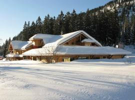 Chalet Hotel Vaccapark, Mieussy