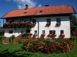 Bauerborchardt - Urlaub am Bauernhof bei Familie Borchardt, Wernberg (Oberwernberg yakınında)