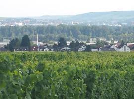 Ferienwohnung Weingut Leis, Oestrich-Winkel (Hallgarten yakınında)