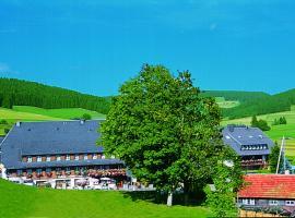 Hotel Zum Löwen - Unteres Wirtshaus, Titisee-Neustadt