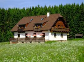 Penzion Pláně, Nové Hutě (Paseka yakınında)