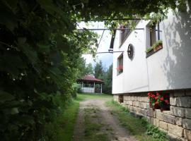 Guesthouse Prachovské skály, Blata (Prachov yakınında)