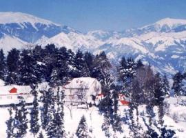 Alps Resort