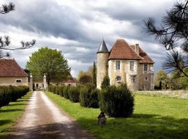 Château de Saint Georges, Saint-Georges-sur-Moulon (рядом с городом Pigny)