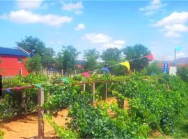 Shapotou Damo Qingyuan Farmstay