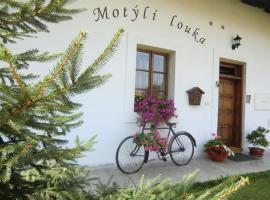 Penzion Motýlí Louka, Nasavrky (Bojanov yakınında)