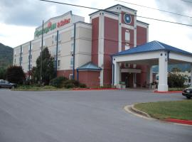 Mountain Inn & Suites, Erwin