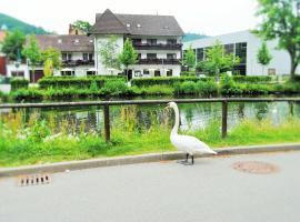 Hotel Schiff Nagold, Nagold