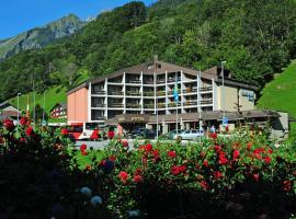Hotel Sardona, Elm