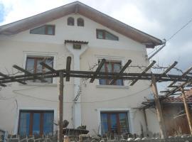 Mitinkovata House