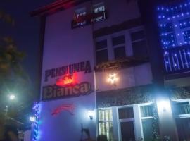 Pensiunea Bianca, Ботошани