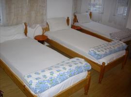 Hotel Zora, Borovan