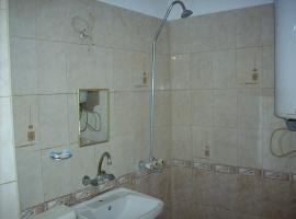Apartment Tzvetana Draganinska, Borovan