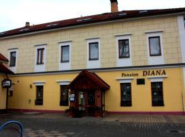 Hotel Diana, Nový Jáchymov