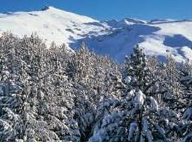 Apartment Ski Sierra Nevada