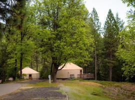 Yosemite Lakes Hillside Yurt 3