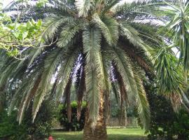 La Palma, Magliano in Toscana (Marsiliana yakınında)