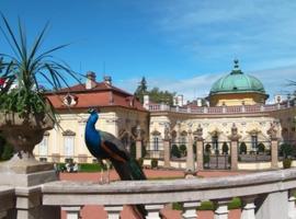 Hotel Buchlovice, Buchlovice