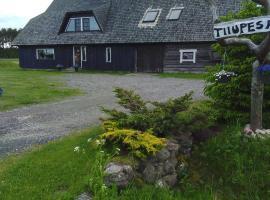 Tiiupesa Guest House