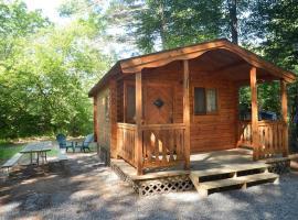 Lake George Escape One-Bedroom Rustic Cabin 62, Warrensburg (in de buurt van Knowelhurst)