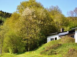 Eifel Landhaus Seeblick, Biersdorf