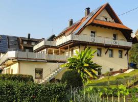 Sonnenterrasse, Elzach (Winden im Elztal yakınında)