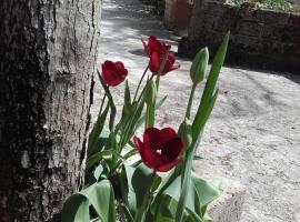 La Spasella, Uscerno (Illice yakınında)