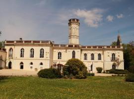 Chateau Castelrives, Bessières (рядом с городом Buzet-sur-Tarn)