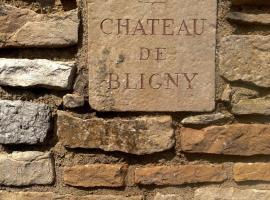 L'appartement du Château de Bligny Les Beaune, Bligny-lès-Beaune (рядом с городом Tailly)