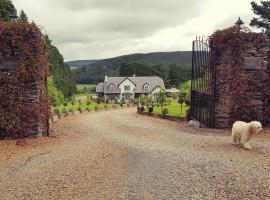 Stoops Guesthouse, Shillelagh (рядом с городом Killinure Bridge)