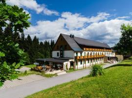 Waldhotel Vogtland, Klingenthal
