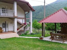 Apartment Mitric, Pluzine