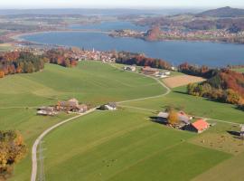 Baby- und Kinderhof Aicherbauer, Seeham (Obertrum am See yakınında)