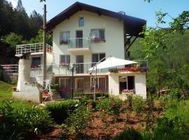 The Illuminating House, Lomnitsa (Zelenigrad yakınında)