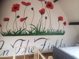 In The Fields, Zonnebeke (Zandvoorde yakınında)