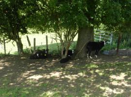 Xhawirs Horse Farm