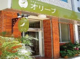 Ishigakijima Hotel Olive, Ishigaki
