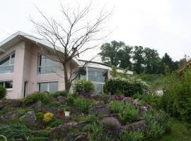 Maison de la Lumière, Montcel (рядом с городом Trévignin)