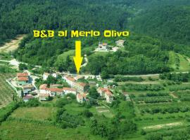 B&B al Merlo Olivo, Буйе (рядом с городом Грожнян)