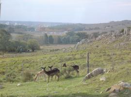 Cabañas Tandilia, Tandil (Villa El Cacique yakınında)
