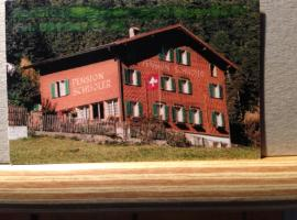 Casa Schuoler, Disentis