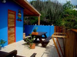 Hopi Cadushi Studio, Santa Cruz (San Fuego yakınında)