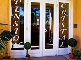 Pension Cristal, Rosice (Tetčice yakınında)