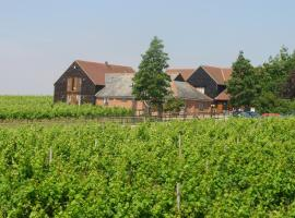 Mersea Island Vineyard, East Mersea (рядом с городом Peldon)
