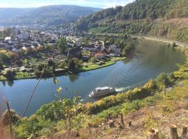 Romantisches Hirschhorn am Neckar, Hirschhorn