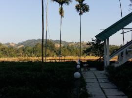Chang Ghar, Kāziranga (рядом с городом Hatikhuli)