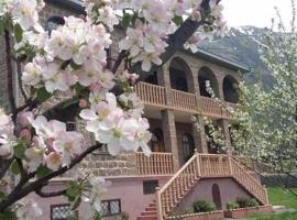 Max Hotel Gogi Alibegashvili